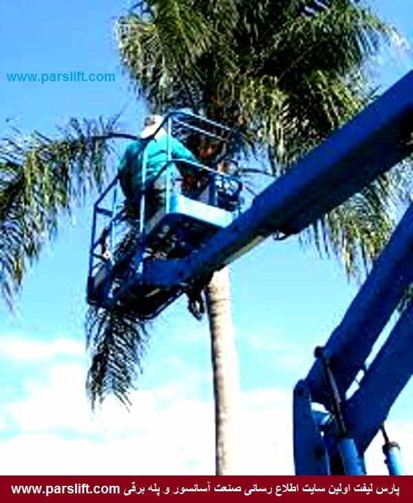 بالابر یا آسانسور هوایی ویژه درختان بلند در خدمت صنعت باغداری www.parslift.com